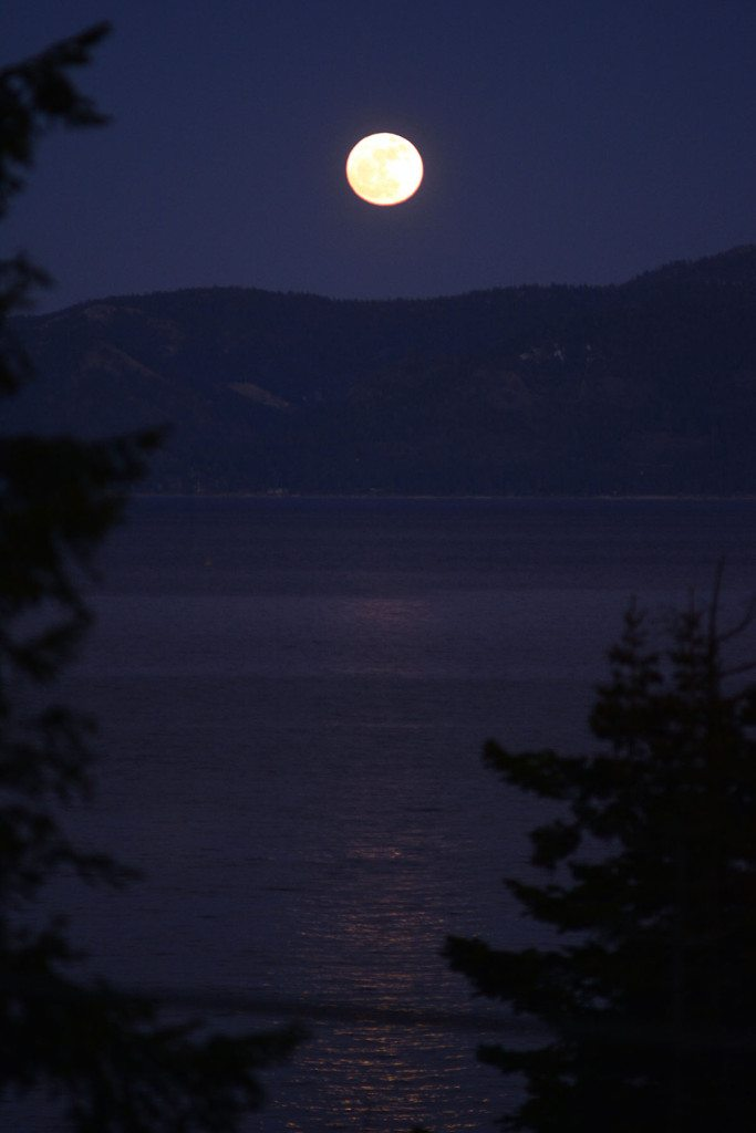 A full moon came out for the Jan. 15 benefit.