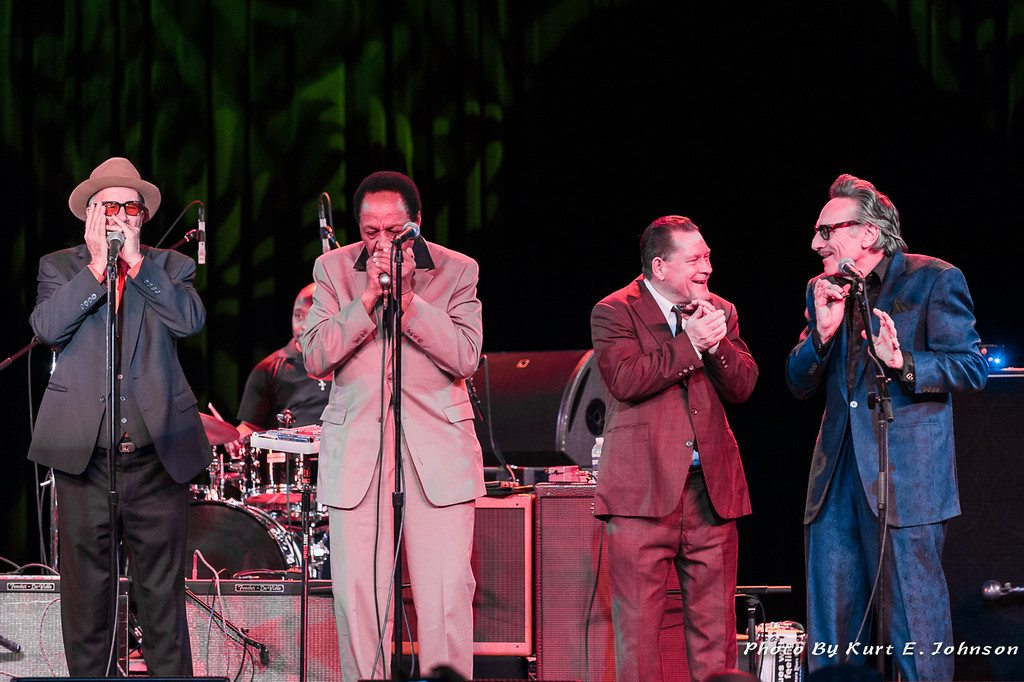Harmonica heroes Mark Hummel, Billy Boy Arnold, Steve Guyger and Rick Estrin.