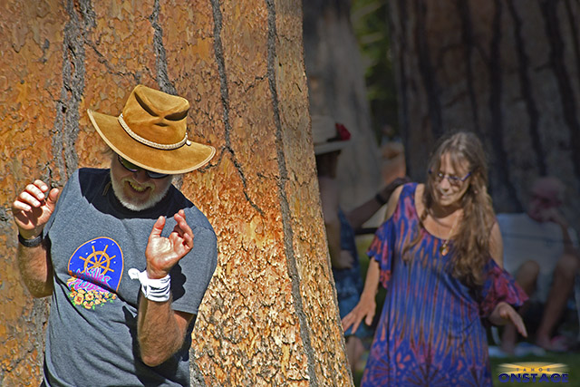 Songs from the Wood: Tom Cross and Kimberly Wheat of Sacramento dance to Achilles Wheel on Wednesday on Valhalla Tahoe's Grand Lawn at the Tallac Historic Site in South Lake Tahoe. Tahoe Onstage photos by Tim Parsons